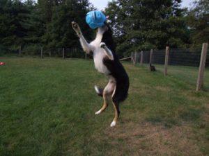 kai jumping1
